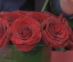 aranzovani kvetin navod